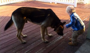 Bryce loves playing with Maximus and giving him treats! Maybe too many treats!
