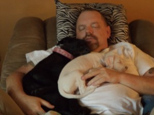 Gia and her baby sister Luna  sleeping on our new daddy   he just had a seizure and we are helping him out